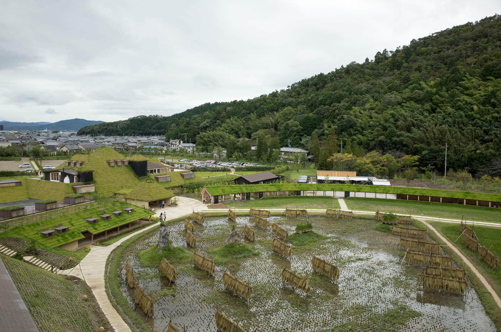藤森照信ミュージアム見学「ラ コリーナ近江八幡」のツアーに参加してきた!